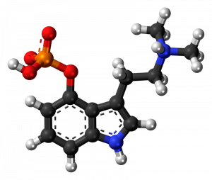 The chemical makeup of Psilocybin